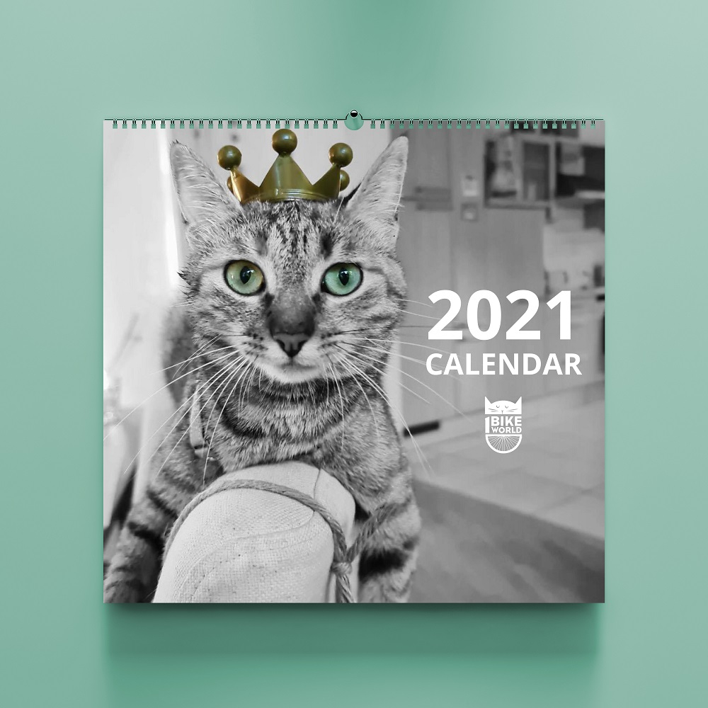SOLD OUT 2021 Charity Calendar PREORDER 1bike1world