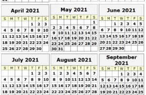 2021 Yearly Printable Calendar One Page 12 Month Calendar